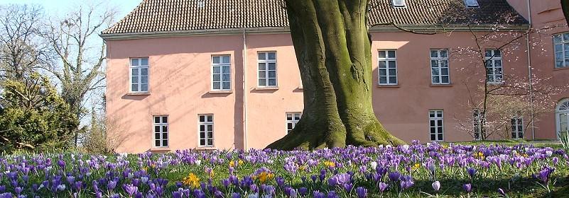 Der Schlosspark im Frühling