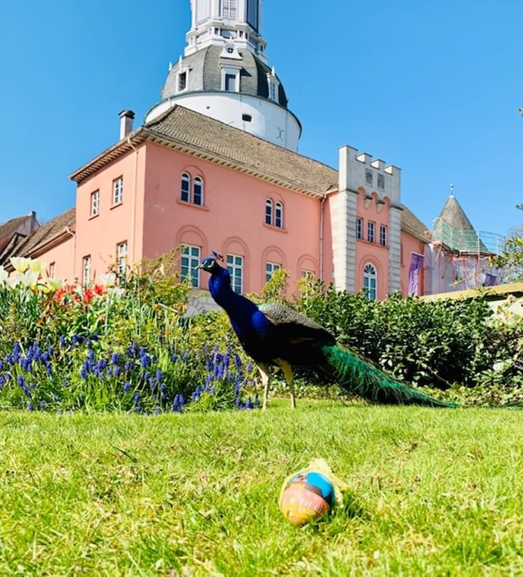 Volksbank Jever ersteigert für einen guten Zweck Osterei mit der Außenansicht des Schlosses